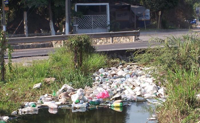 Mancha urbana daña a cultivos en Lázaro Cárdenas