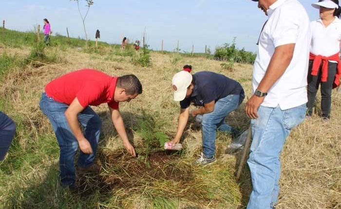 Peribán emprende campaña de reforestación