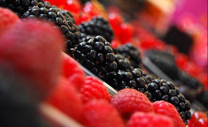 Culmina Tercer Diplomado en Producción de Berries