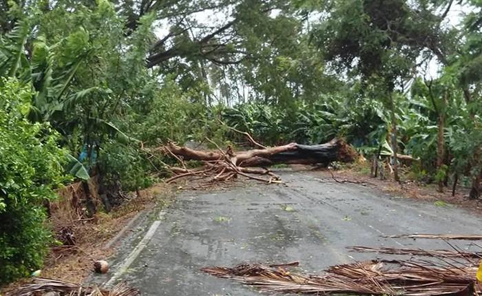 Supervisará Silvano daños en Coahuayana por Patricia