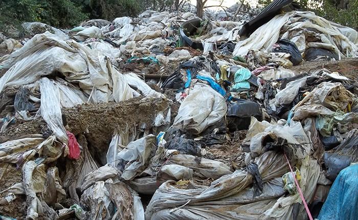 Lluvias provocan desastre ecológico en LC