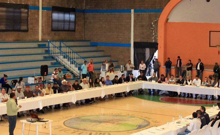 Arrancan trabajos para detener los delitos ambientales en Tancítaro